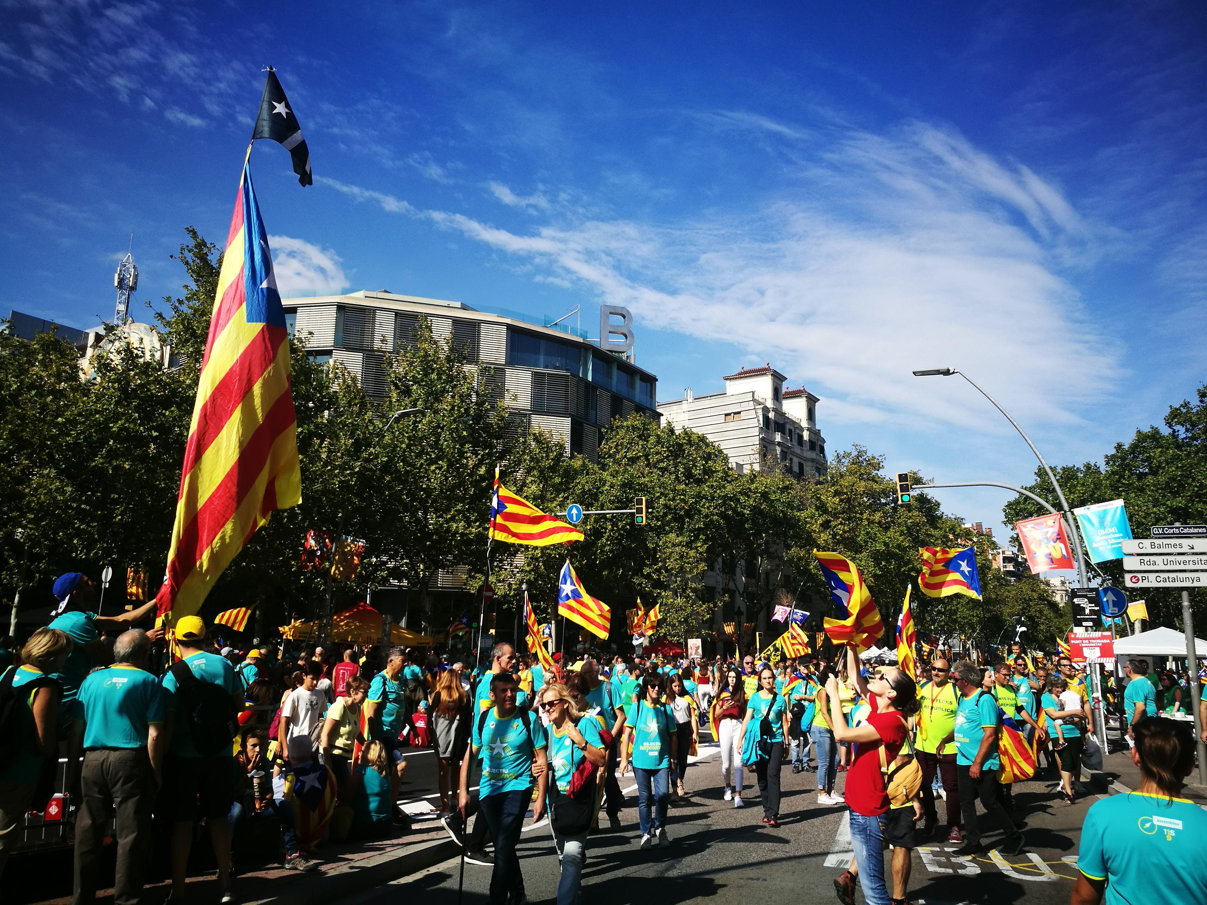Manifestació Diada a Barcelona(1)