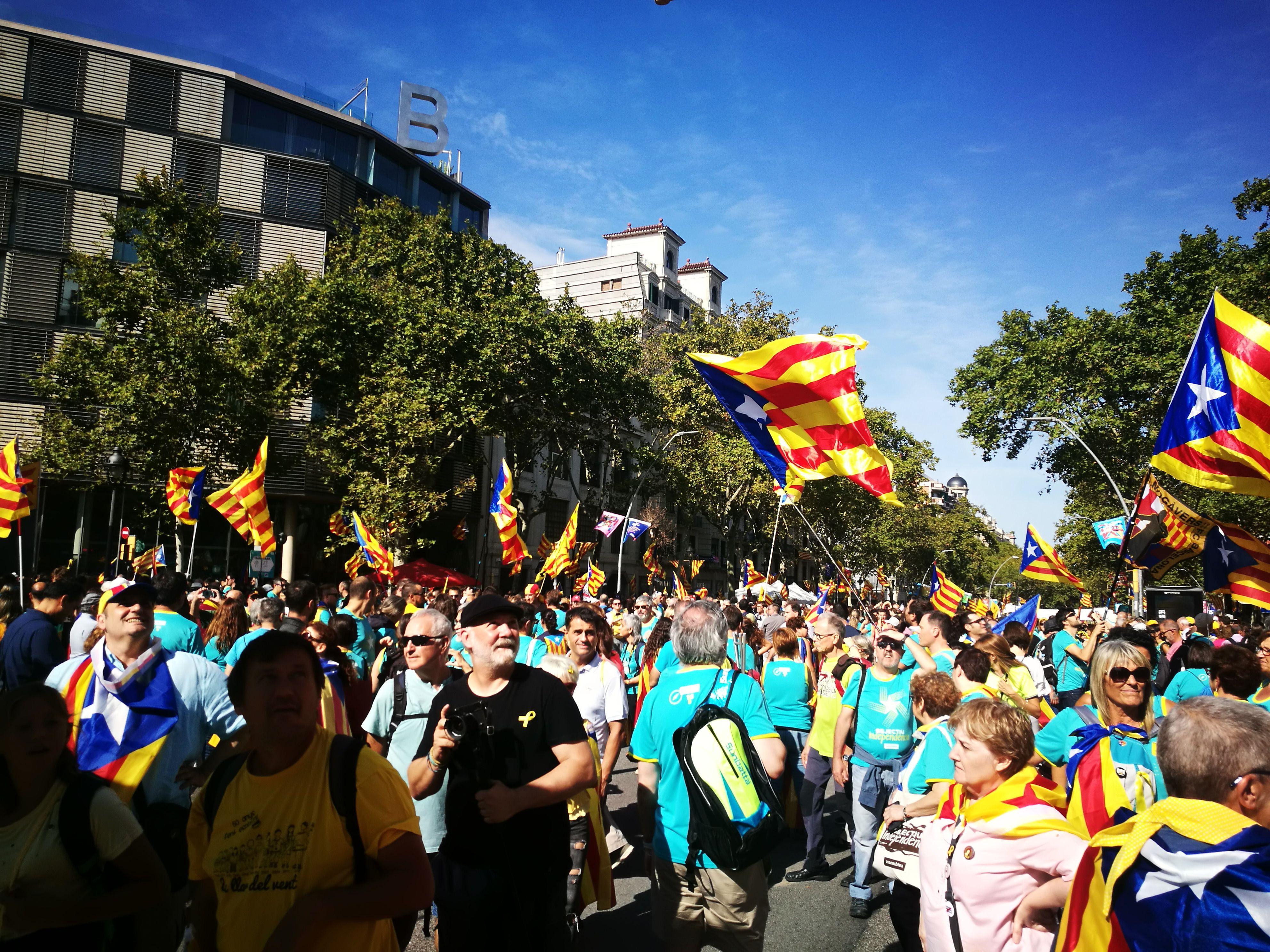 Manifestació Diada a Barcelona(2)